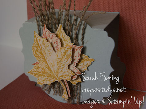 fall pop-up cards - fall cards - popup cards - stampin up - Stampin' Up! - Best of Autumn - Sarah Fleming - Prepare to Dye