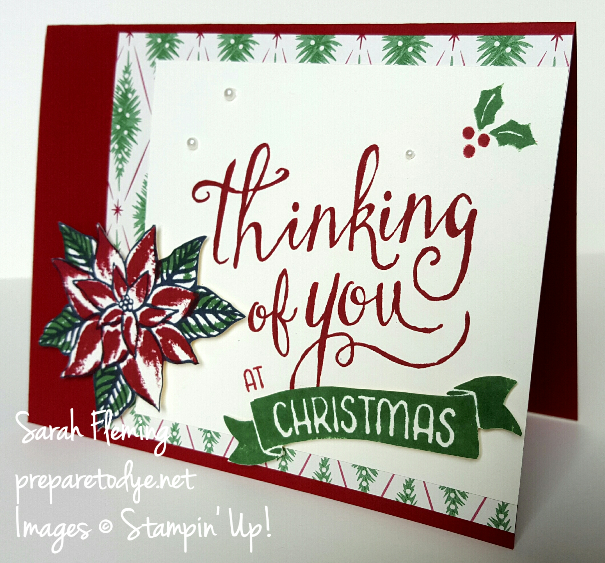 Stampin' Up!'shipment host sets this year are wonderful. Time of Year makes beautiful Christmas cards and pairs nicely with the poinsettia from Reason For the Season - Sarah Fleming - Prepare to Dye