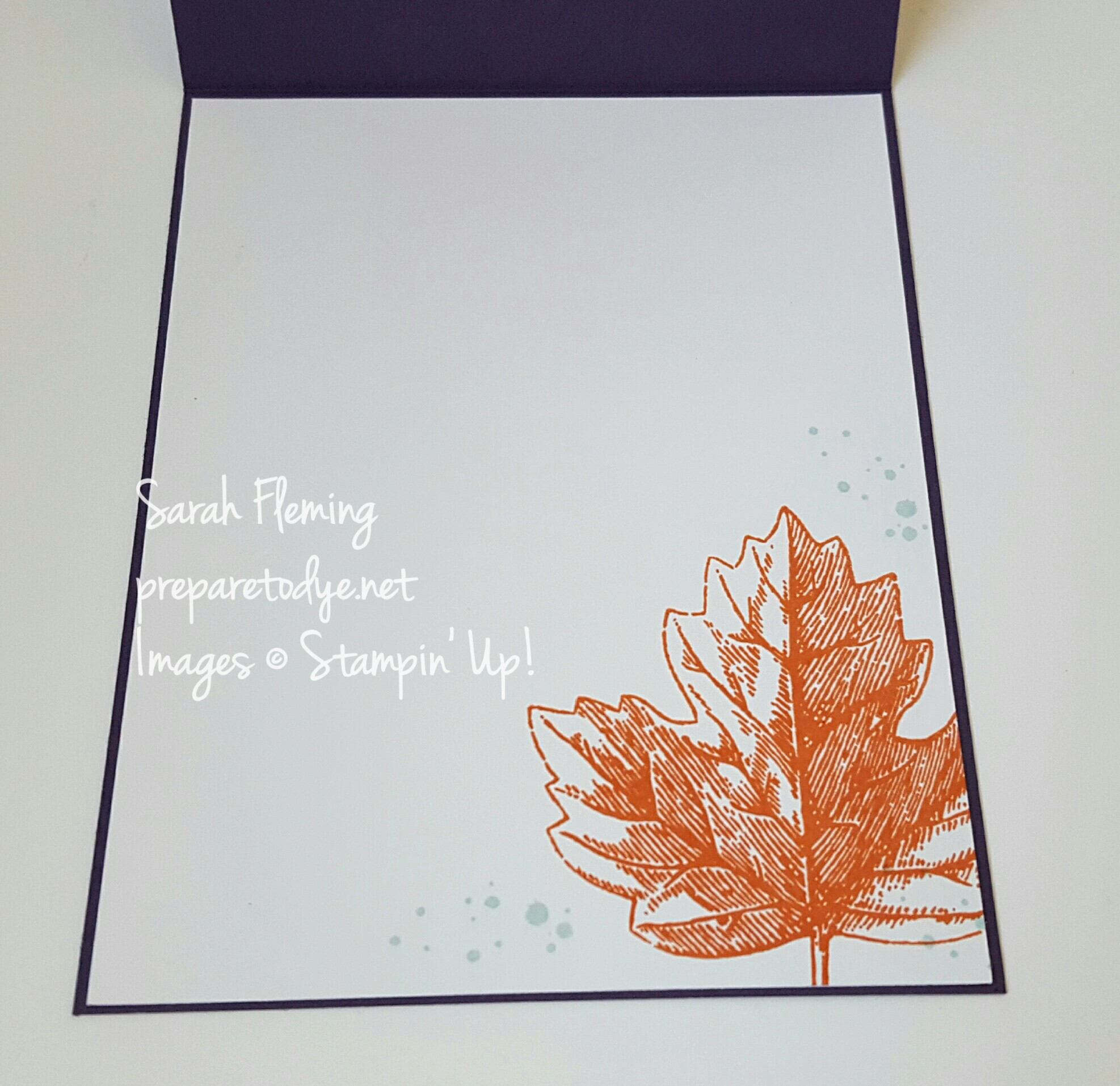 Stampin' Up! Vintage Leaves falling in the spotlight - motion technique and spotlight technique - handmade fall card - autumn card - Sarah Fleming - Prepare to Dye Papercrafts