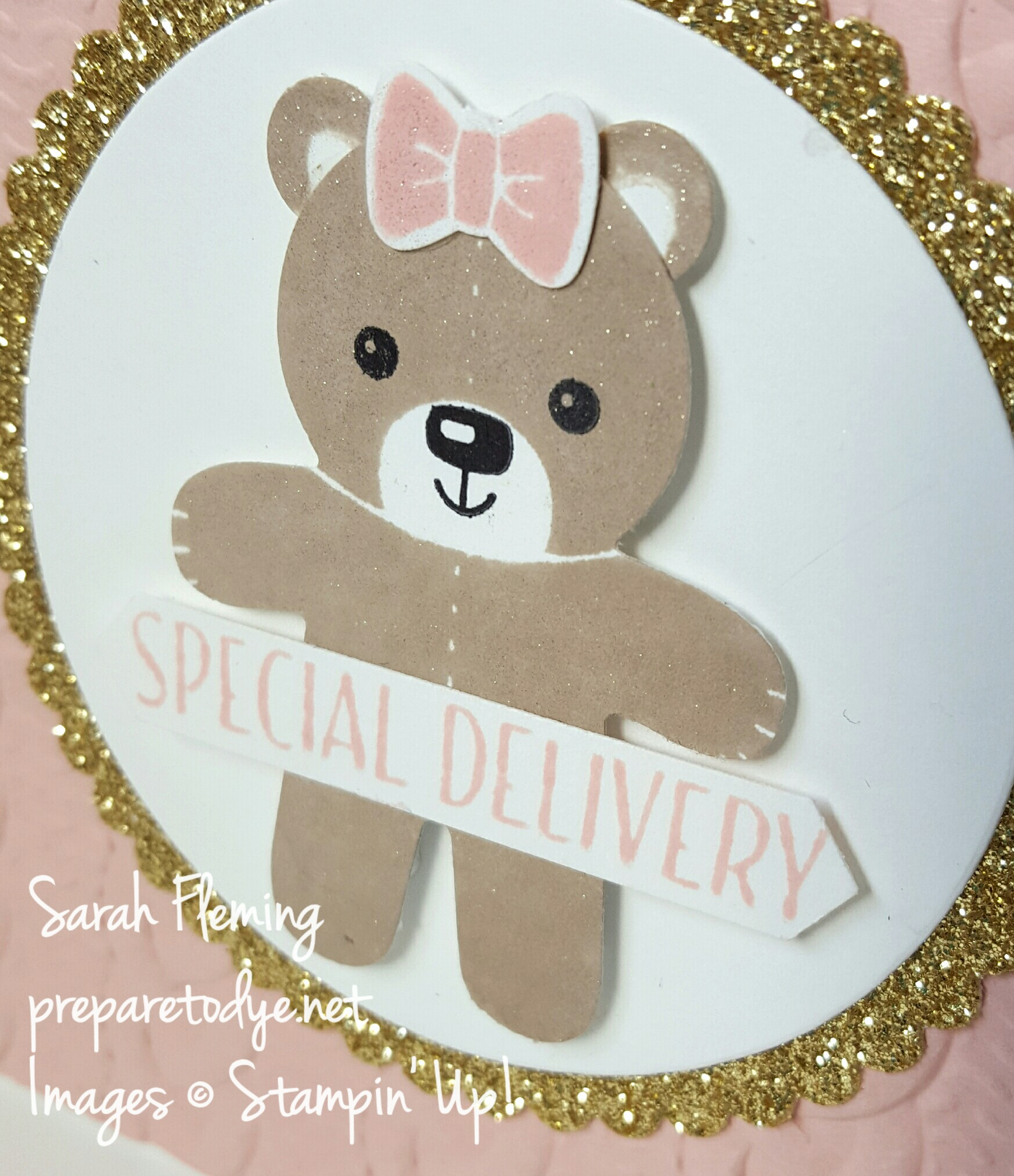 Stampin' Up! Cookie Cutter Christmas, Cable Knit Embossing Folder, Tin of Tags - using all Holiday Catalog items to make a gorgeous baby card! - Sarah Fleming - Prepare to Dye Papercrafts