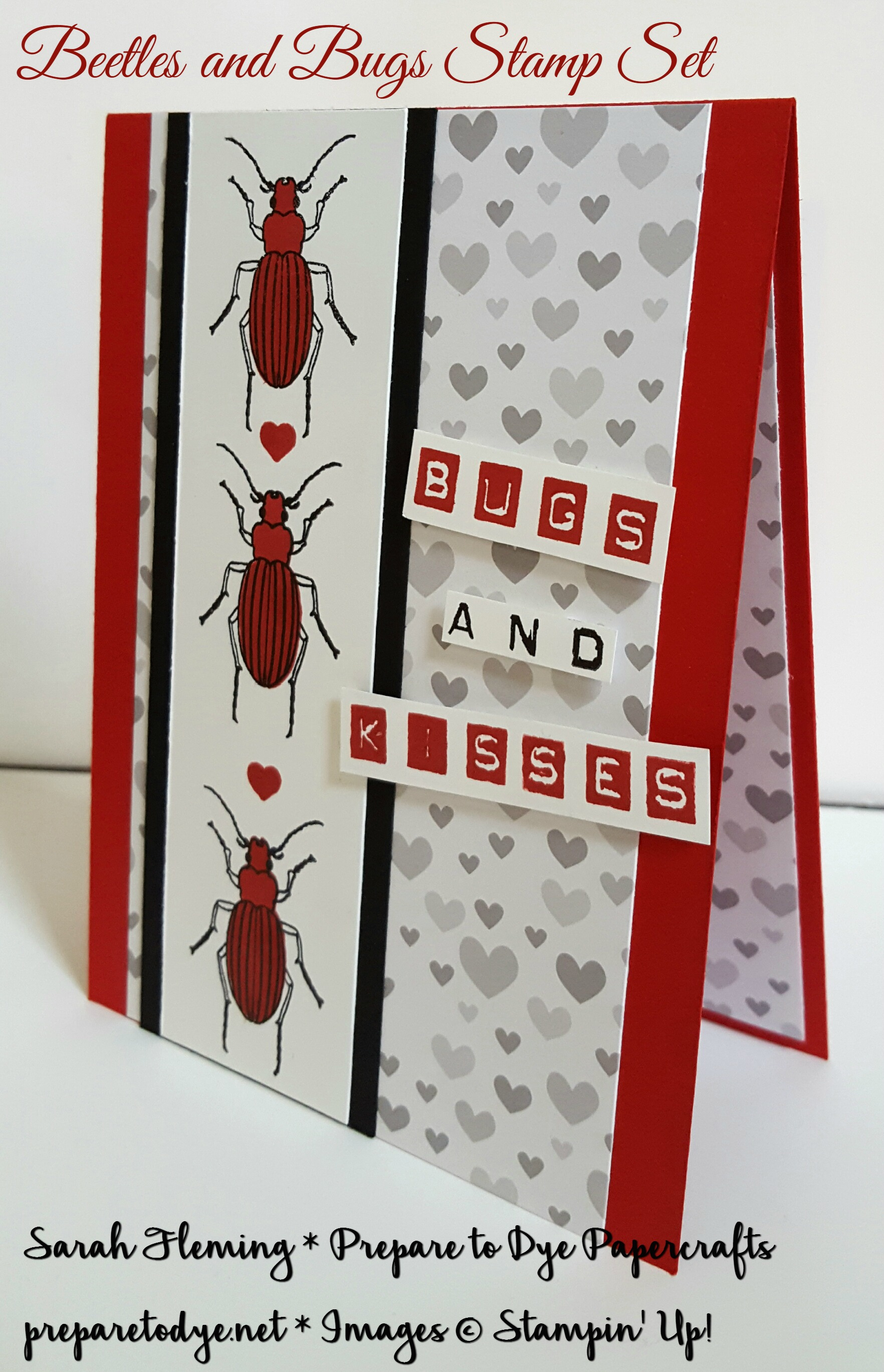 Stampin' Up! Beetles and Bugs stamps with Labeler Alphabet stamps - Handmade love card for Valentine's Day or any occasion - Sarah Fleming - Prepare to Dye Papercrafts