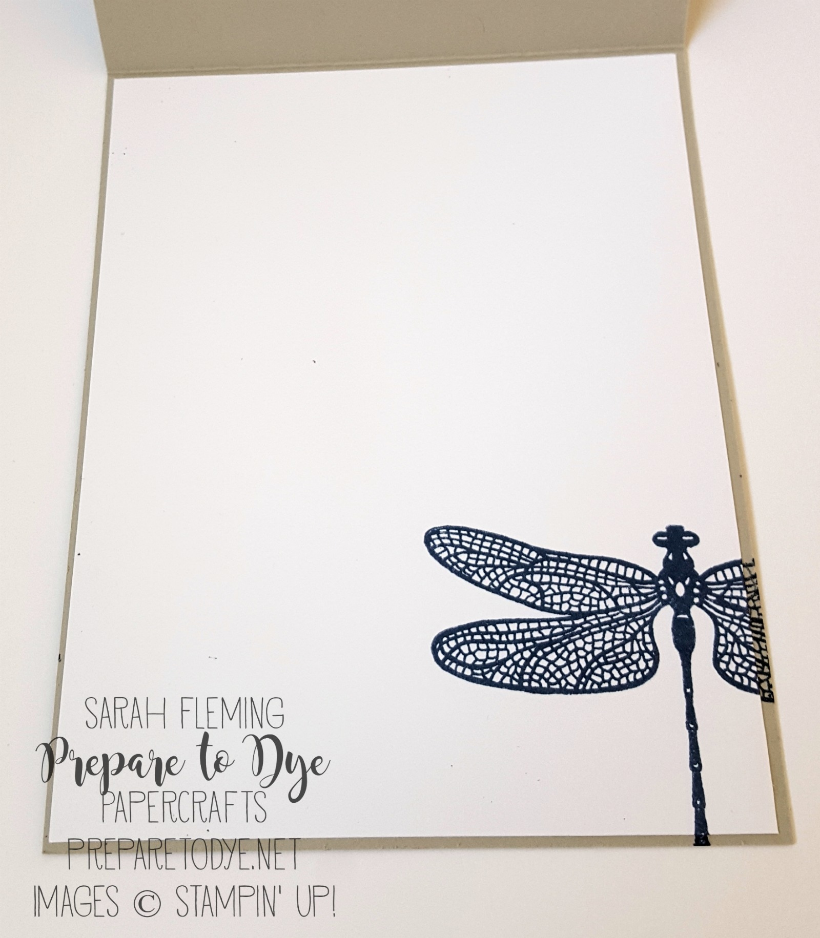 Stampin' Up! Dragonfly Dreams stamps -- don't forget to finish the inside of your card! - Sarah Fleming - Prepare to Dye Papercrafts