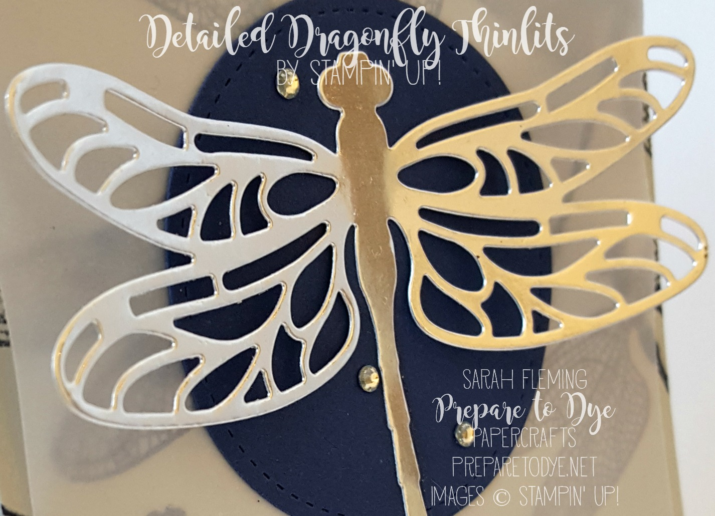 Stampin' Up! Detailed Dragonfly Thinlits are beautiful in Silver Foil!
