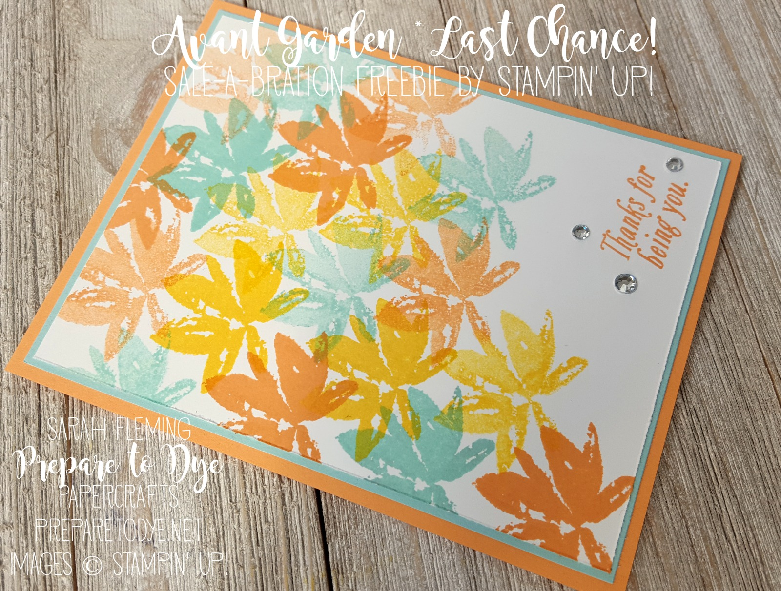 Stampin' Up! Avant Garden - Last chance to get this set for free with a $50 purchase! - Sarah Fleming - Prepare to Dye Papercrafts
