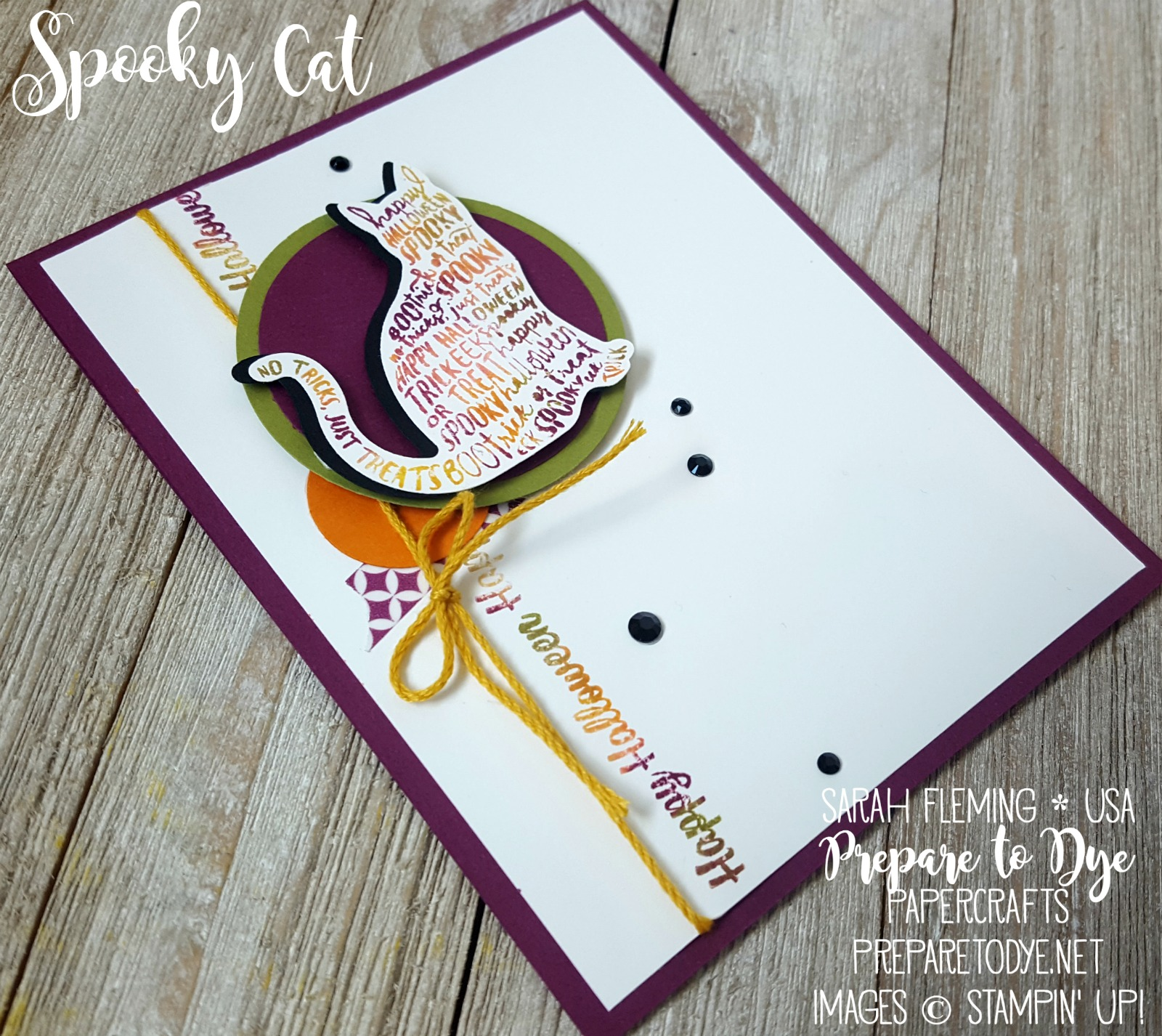 Stampin' Up! Holiday Catalog sneak peek - Spooky Cat bundle with black rhinestones - Sarah Fleming - Prepare to Dye Papercrafts