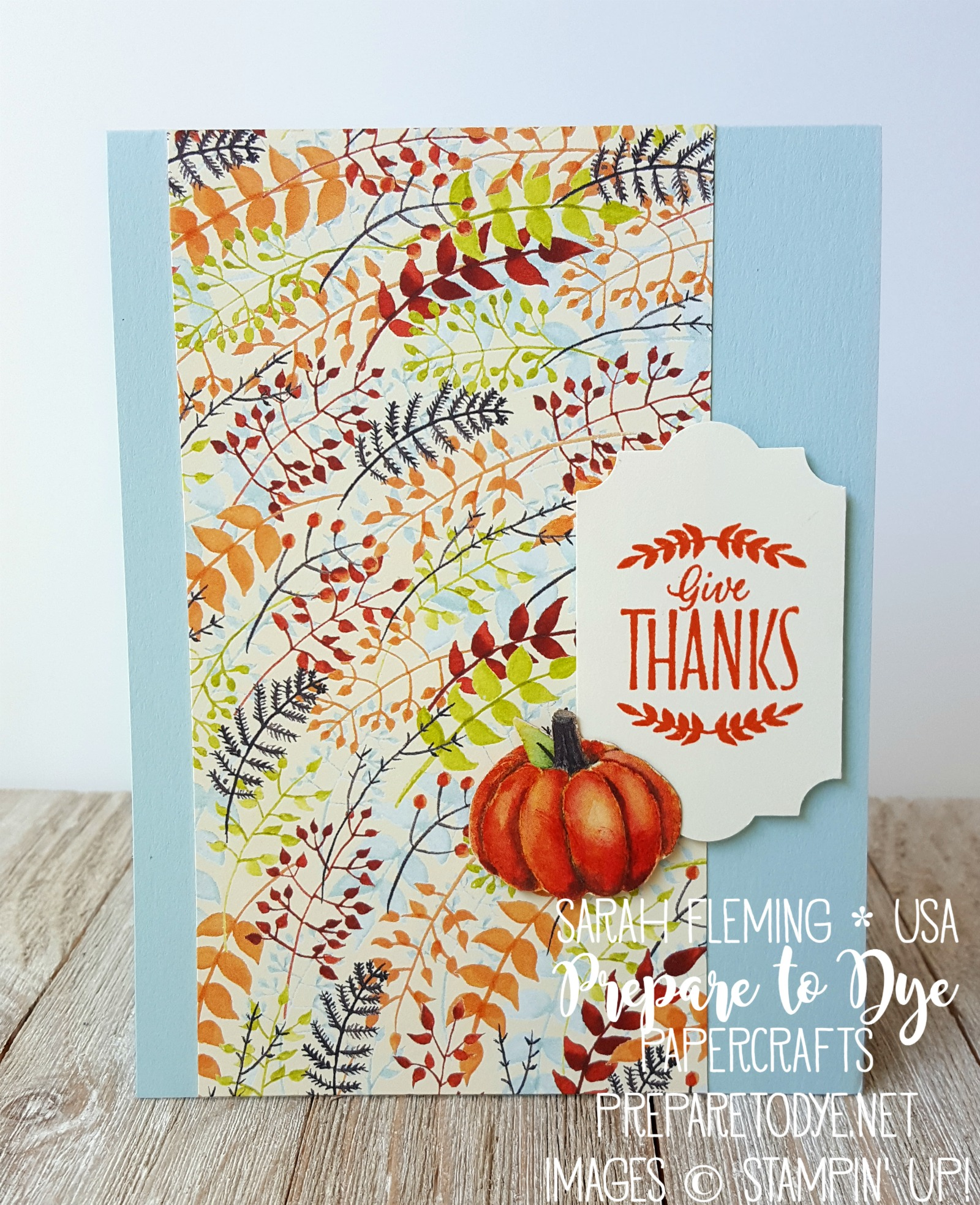 Stampin' Up! Labels to Love stamps with Painted Autumn paper, Everyday Label Punch - easy handmade Thank you Thanksgiving autumn fall card - Sarah Fleming - Prepare to Dye Papercrafts