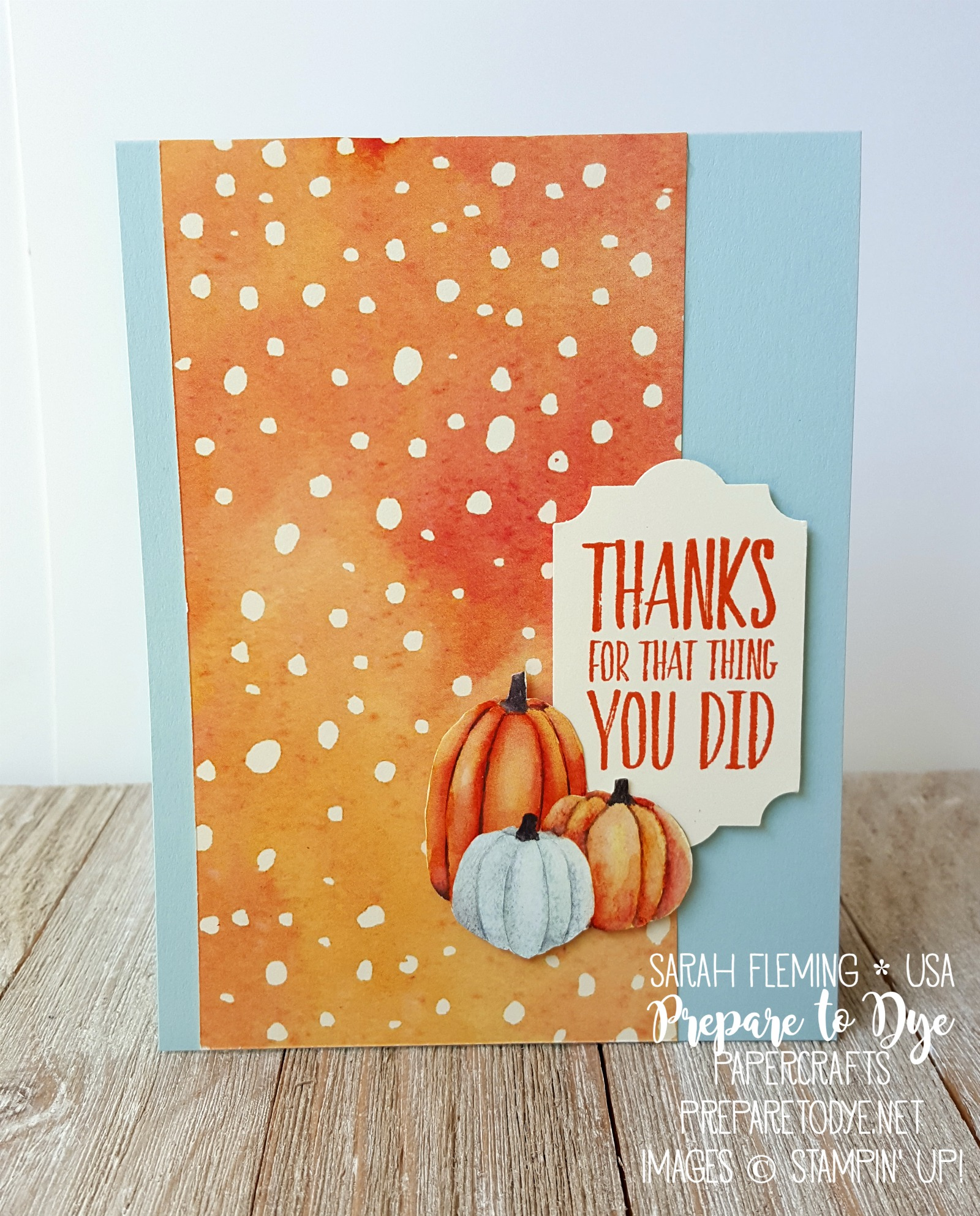Stampin' Up! All Things Thanks stamps with Painted Autumn paper, Everyday Label Punch - easy handmade Thank you Thanksgiving autumn fall card - Sarah Fleming - Prepare to Dye Papercrafts