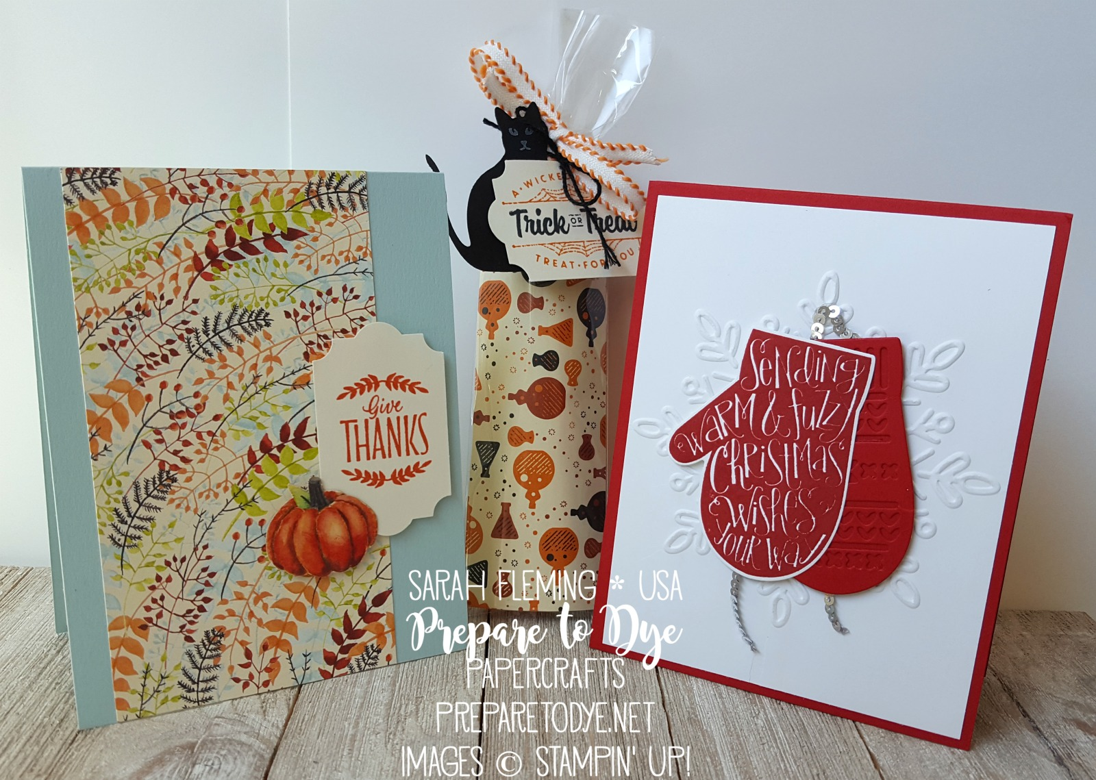 Stampin' Up! Holiday Catalog Halloween, Thanksgiving, and Christmas projects - Sarah Fleming - Prepare to Dye Papercrafts