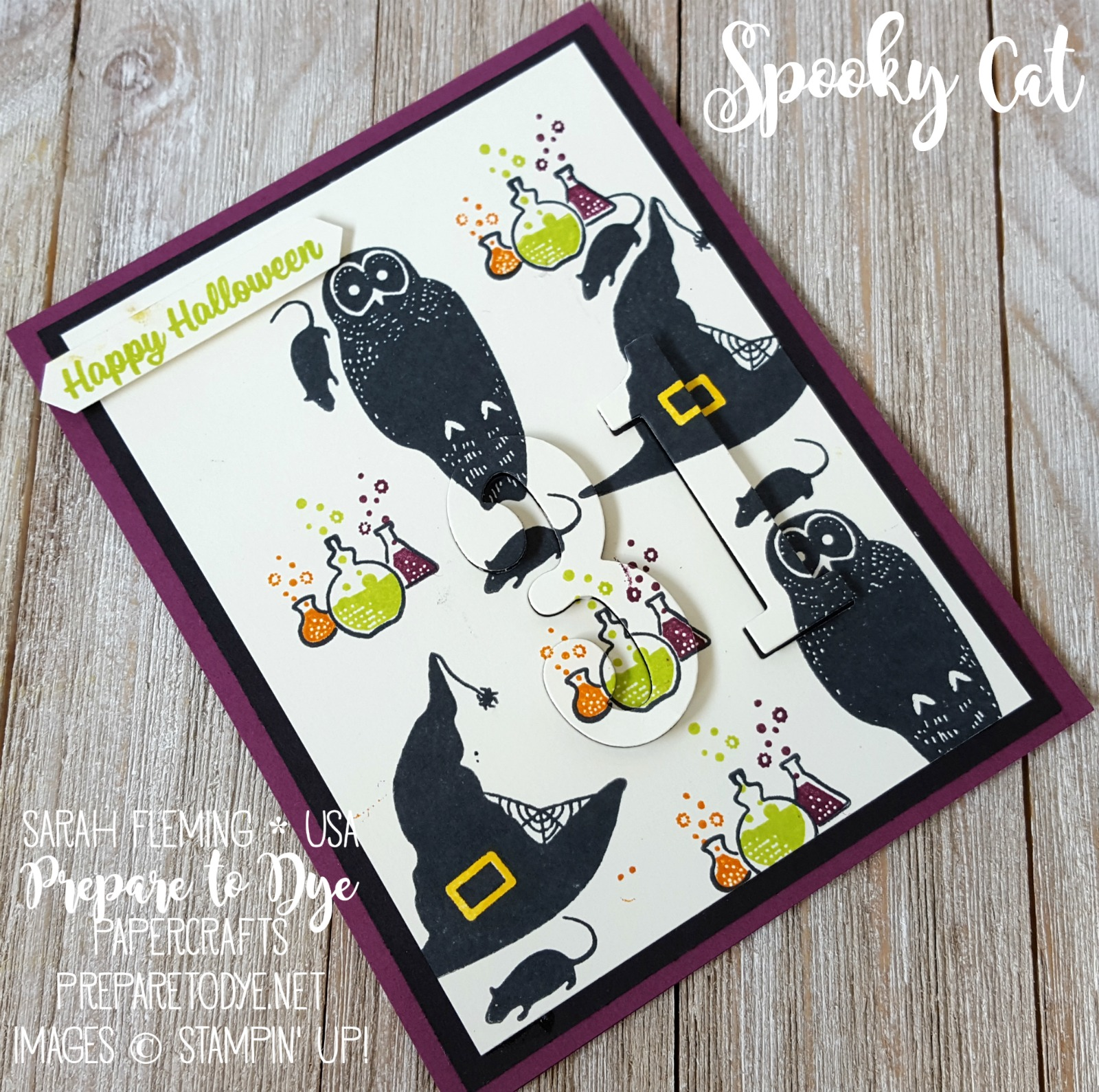 Stampin' Up! Spooky Cat eclipse handmade Halloween card with Large Numbers framelits, Classic Label Punch - Sarah Fleming - Prepare to Dye Papercrafts