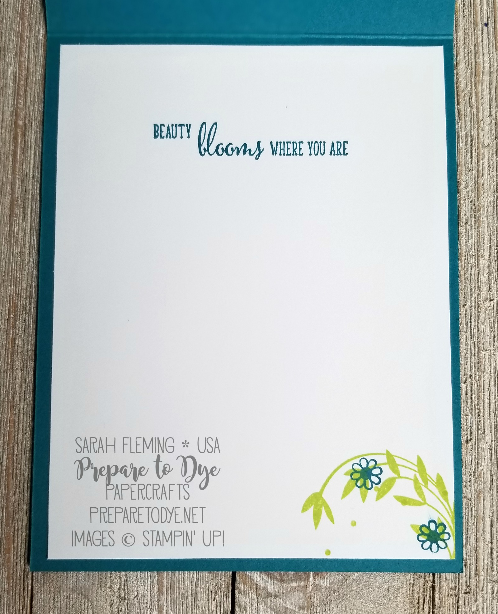 "Stampin' Up! Beautiful Peacock - FREE Sale-A-Bration 2018 stamp set - with Shimmery White embossing paste, Sweet Cake framelits, Lemon-Lime Twist 1/4"" Ombre Ribbon, Friendship's Sweetst Thoughts - handmade friend card video tutorial - Sarah Fleming - Prepare to Dye Papercrafts"