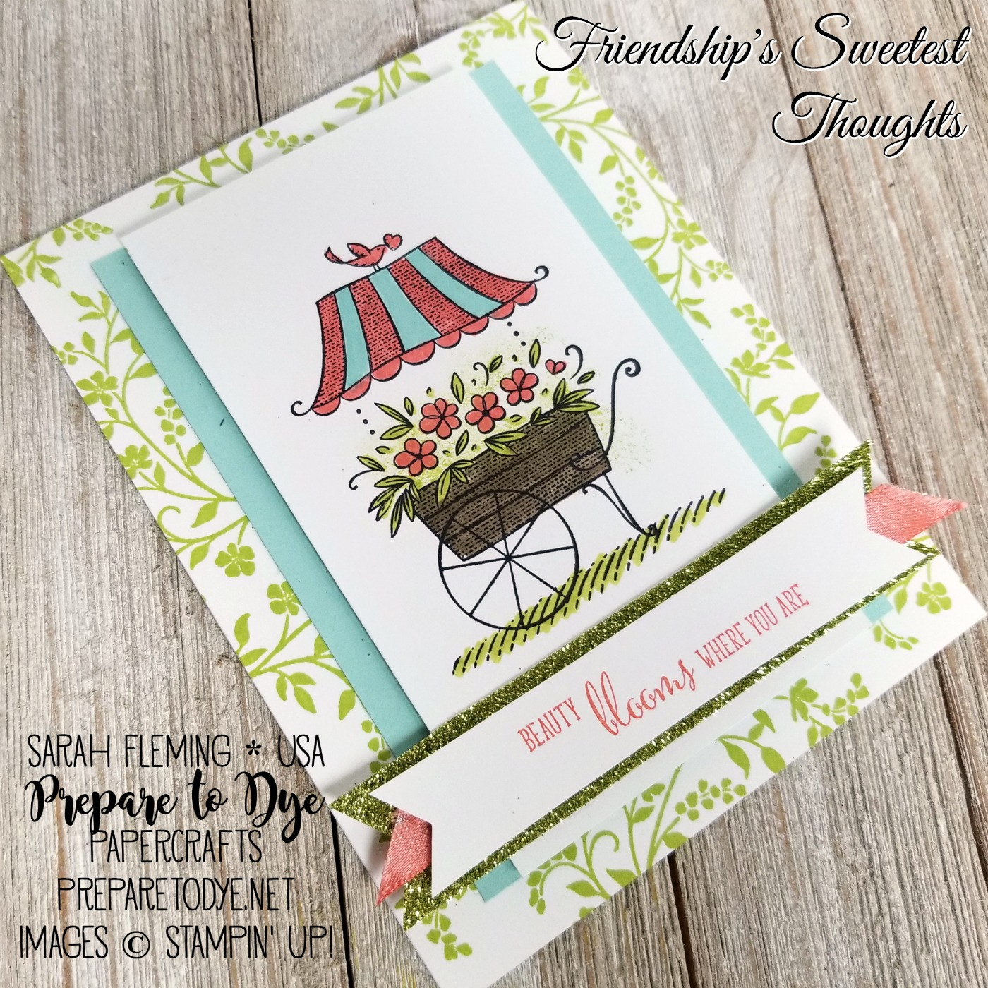 Stampin' Up! Friendship's Sweetest Thoughts with Hold On to Hope, Myths & Magic Glimmer Paper, Sale-A-Bration Shimmer Ribbon Pack (free with $50 purchase), Stampin' Write Markers - Sarah Fleming - Prepare to Dye Papercrafts