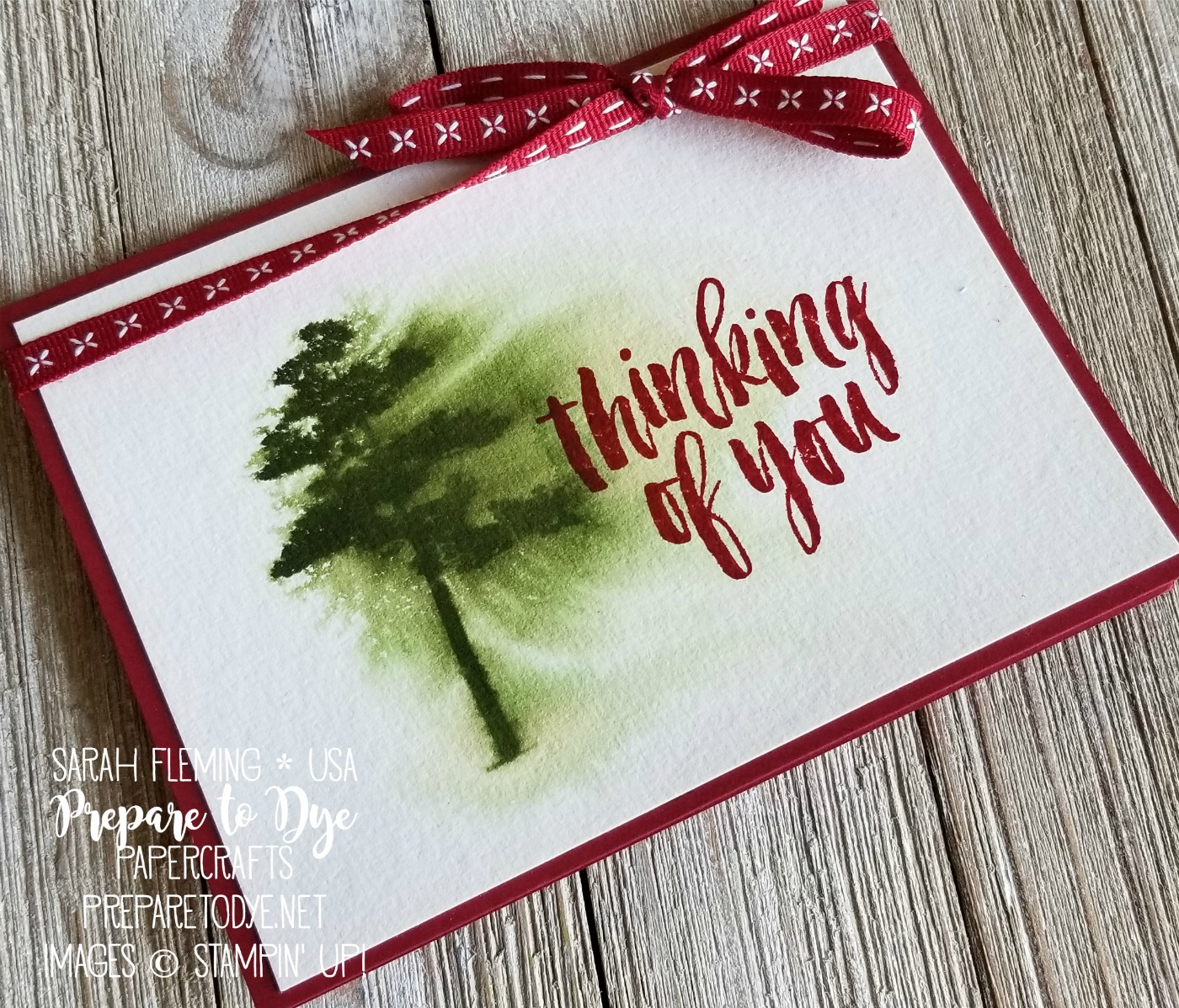 Stampin' Up! Rooted in Nature - new stamp set in 2018-2019 annual catalog with the returning Mossy Meadow color - live crafting video - Sarah Fleming - Prepare to Dye Papercrafts