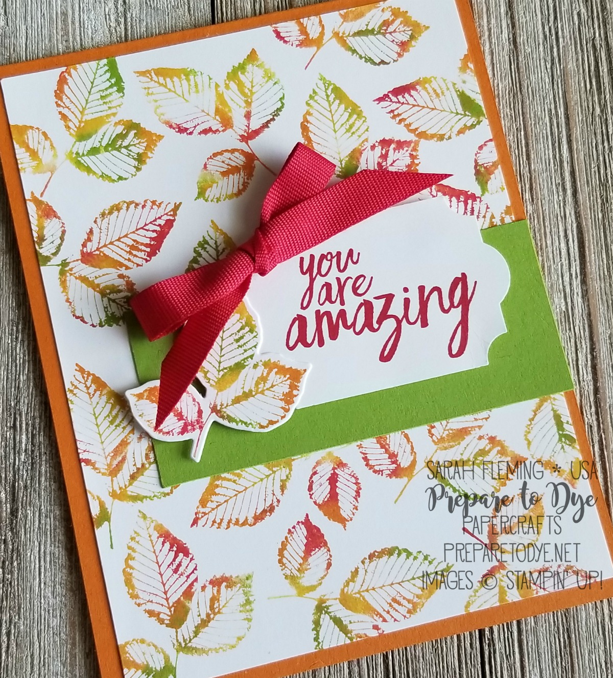 Stampin' Up! handmade fall/autumn card using Rooted in Nature bundle with Nature's Roots framelits, All Things Thanks, Everyday Label Punch, baby wipe technique - Sarah Fleming - Prepare to Dye Papercrafts
