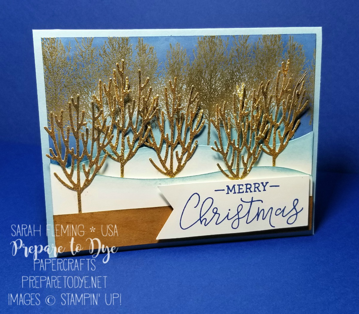 Stampin' Up! handmade Christmas winter card featuring Winter Woods bundle with In the Woods framelits, heat embossing, Warm Hearted host stamp set, sponged sky - Sarah Fleming - Prepare to Dye Papercrafts